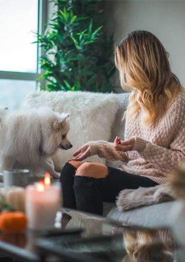 5 Reasons Why Pet Friendly Apartments Are The Future Of Renting